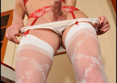 White Rose Trellis Stockings