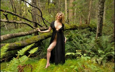 Black Sheer Dress in Woods GALLERY